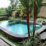 Pool Garden Villa