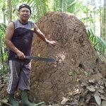 Amazon Tarzan Private Day Tours