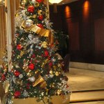 Holiday Christmas trees in hotel lobby (removed Jan.9, 2013)