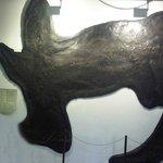Il Besanosauro