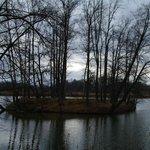 Jezioro przy Dworze