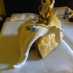 Amazing room service and towel creations