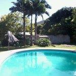 Esta es la piscina y parte del jardin