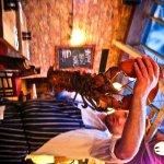 5.6 pounds of Nova Scotia Lobster