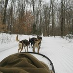 Riding in the Sled-covered with blankets.