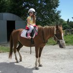 Horseriding....just down the road!