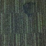 stained carpet inside room