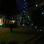 Christmas and new year lighting