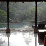 pool Gaya