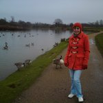 me by the geese