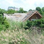 la vue sur le siggiriya roc