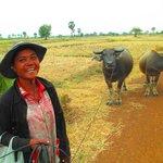 A farmer with her buffalos