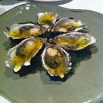 oysters - additional course