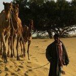 Salim - best Camel Guide Ever!