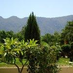 trädgård med berg i bakgrund