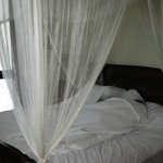 Canopy bed with swagged netting