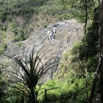 Kuranda Train and Skyrail Tour : Cairns in 2 Days