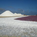 Bonaire, Salt flats with lots of foam, See the pink colour of the water