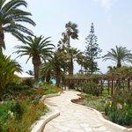 wunderschöne Gartenanlage