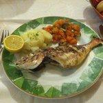 Fresh Breca fish