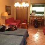 Studion Apartment (1)