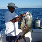 permit fish about 20kilo