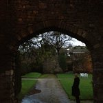 Exploring the Tudor gardens