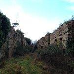 Ruins at Thornbury