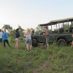 drink break during the afternoon safari