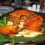 Chilli Crab Yogi Style