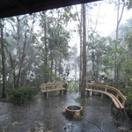 Tropical rain