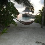 realxing in a hammock
