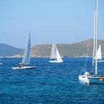 Sea Garden Boats