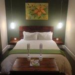 suit bed