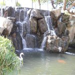 View of the hotel waterfall.