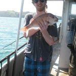 Fishing Waiheke - Day Tours Foto