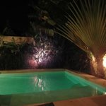 Pool and garden by nght