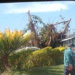 Cyclone damage in Nandi Town