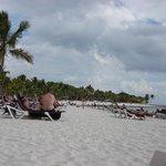 Un oasi caraibica!!