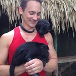 2 baby howler monkeys being cared for at the lodge