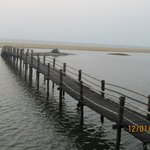 The bridge to the beach
