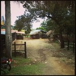 www.lorilarranch.com Horse Tours is a must do!