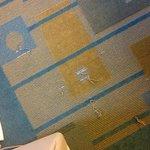 torn carpet