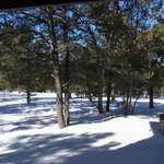 マスウィック ロッジ 部屋からの眺め(外は雪です)