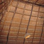 palapa roof with coco lampshade