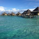 View of some of the overwater bungalows from a boat