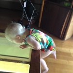 Lillian absolutely loved watching the fish through our table.