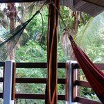 Porch area that our room opened out to. Great place to relax, see/hear wildlife.