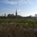 Salisbury Cathedral across the meadows