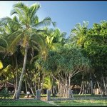 вид с пляжа на Manahara Cabanas